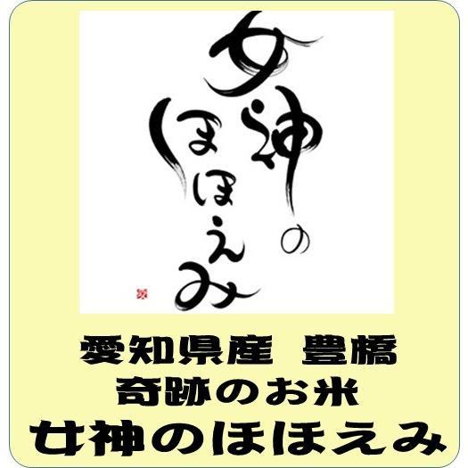 愛知県産 豊橋 女神のほほえみ 令和2年産 白米5kg   送料無料(本州のみ) |takaramai