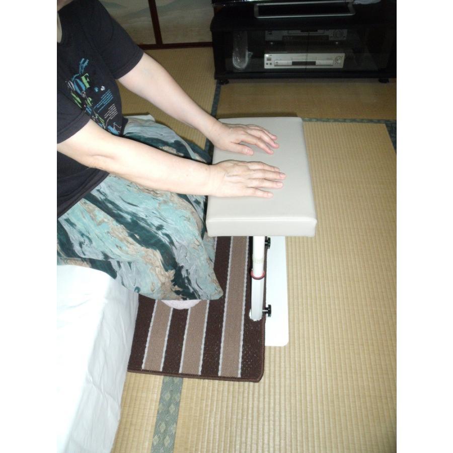 立つ之助 輝 立ち上がり補助手すり 腕で支えて使える 高さ3段階調整 スチール素材 日本製  takei-co 05