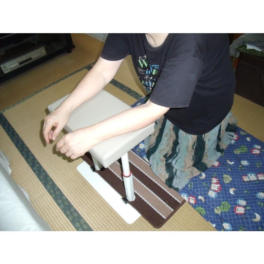 立つ之助 輝 立ち上がり補助手すり 腕で支えて使える 高さ3段階調整 スチール素材 日本製  takei-co 07