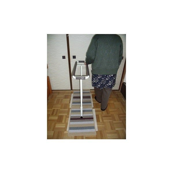 歩行訓練器具 立つ之助 歩 スチール素材 ライトブラウン掲載画像の白とは異なります 日本製|takei-co|03