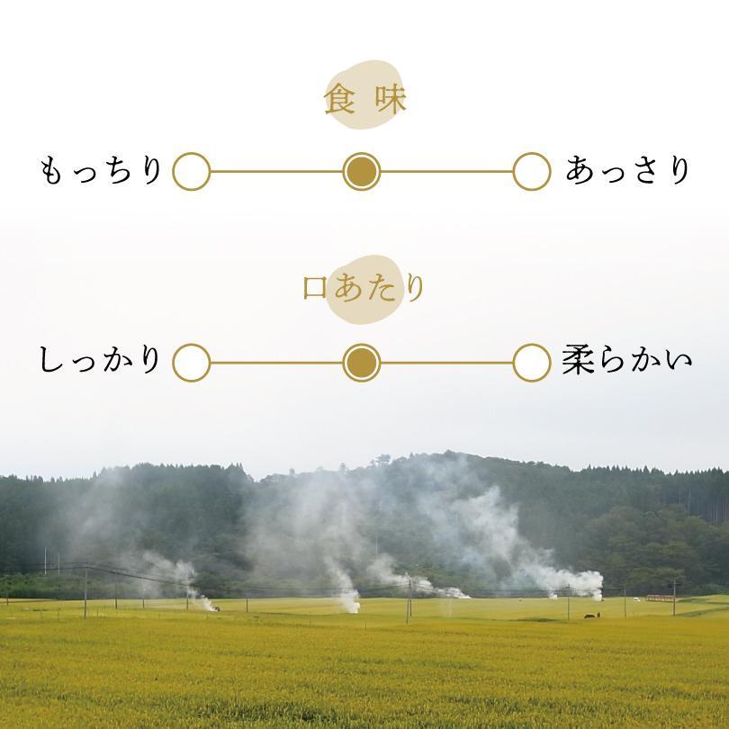 みやぎの天気で育った気仙沼産と登米産のひとめぼれ 300g takeyamarice 04
