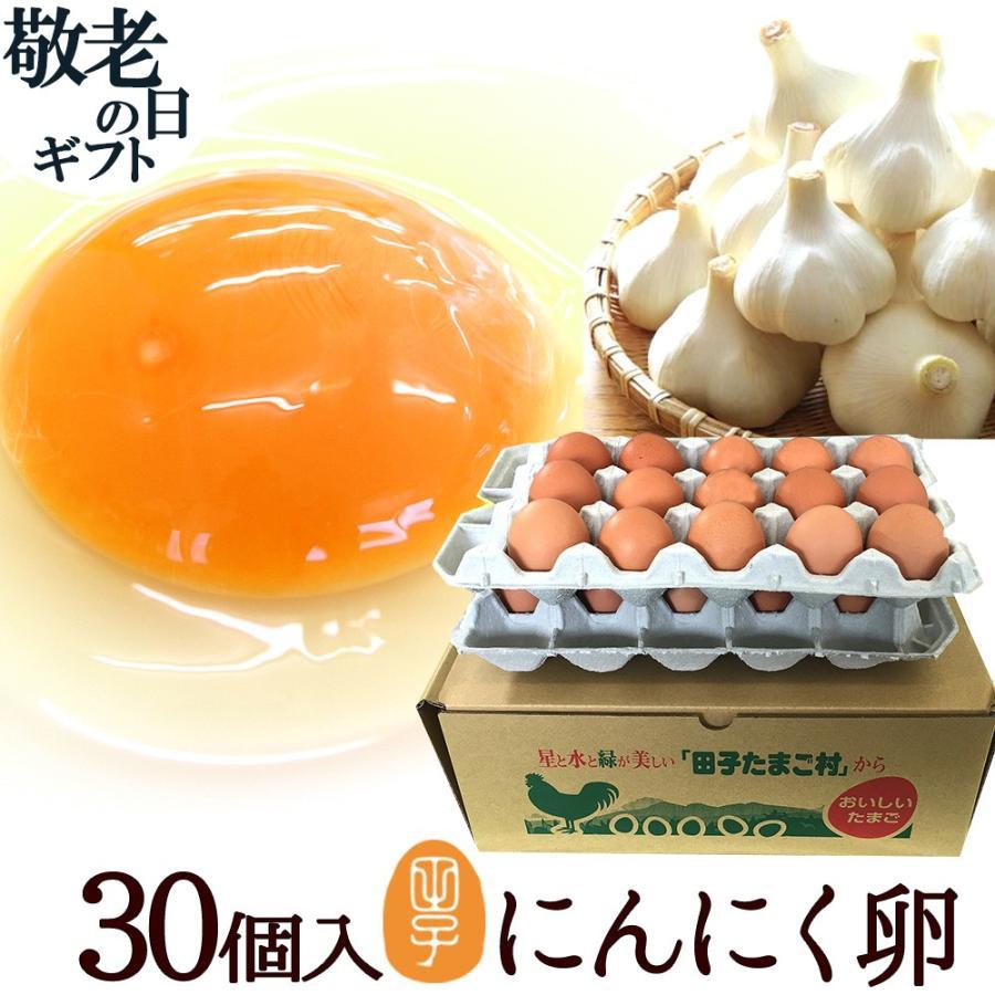 卵 ギフト 2020 送料無料 高級 卵かけご飯 生卵 30個入 生卵25個+破損保証5個 にんにく卵 お取り寄せグルメ 業界No.1 甘く生臭さニンニク臭無し