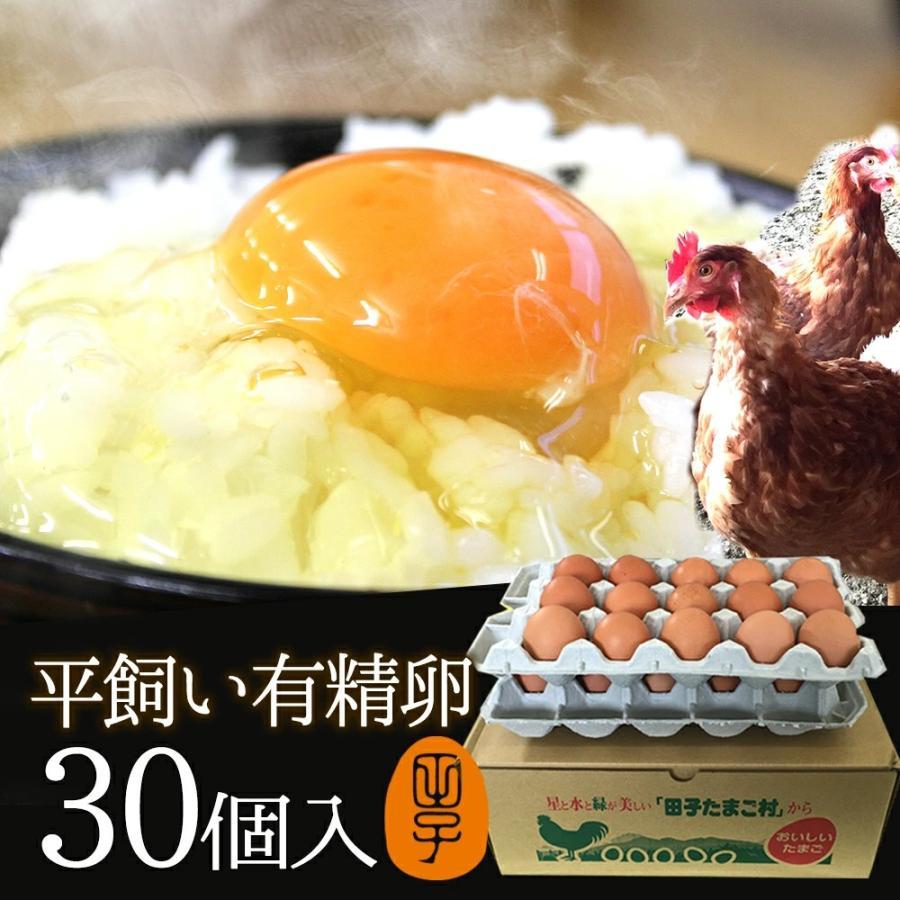 卵 ギフト 送料無料 高級 卵かけご飯 新色 生卵 平飼いで育った純国産鶏が産む健康卵 お取り寄せグルメ 30個入 生卵25個+破損保証5個 店内限界値引き中&セルフラッピング無料 甘く濃厚 有精卵