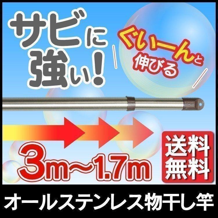 物干し竿 記念日 室内 ステンレス 物干し 伸縮 ASU-300 時間指定不可 茶 舗 アイリスオーヤマ 170〜300cm