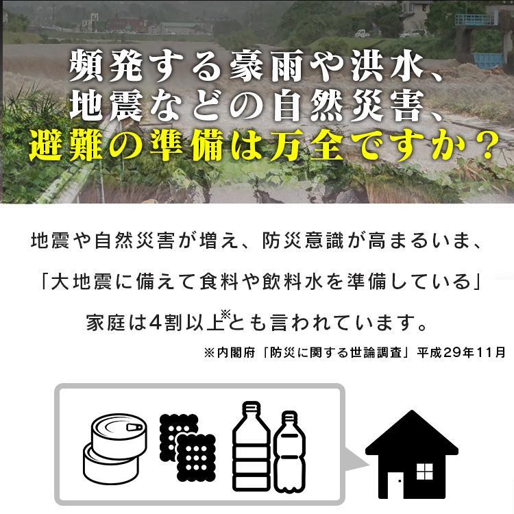 防災セット 1人用 防災グッズ 地震対策 33点 防災リュック BRS-33 ...