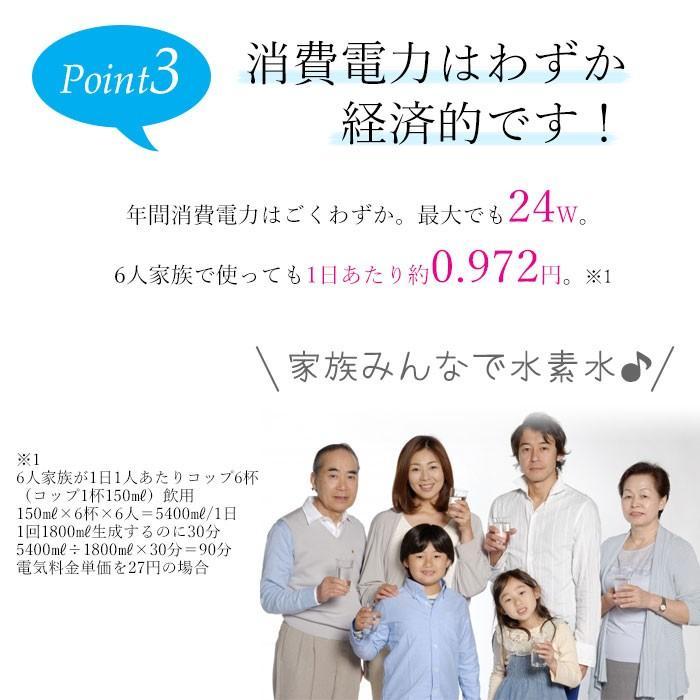 水素吸入器 家庭用 50%OFF 水素水 サーバー 水素水生成器 ルルドプレミアム 送料無料|takumiyshop|09