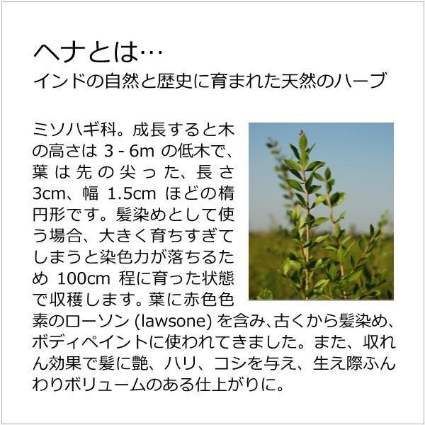 ナイアードヘナ  - ヘナ+木藍(茶系)100g  天然100%白髪染め 白髪を自然な「茶系」の色に染めたい方向け|tamashii|06