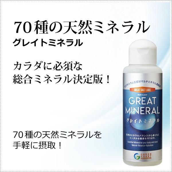 天然マルチミネラル濃縮液 - グレイトミネラル100ml(約1000滴分) マルチミネラルの決定版 グレイトソルトレイクミネラル70種類  添加物無添加|tamashii
