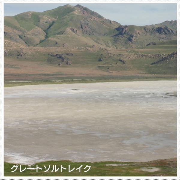 天然マルチミネラル濃縮液 - グレイトミネラル100ml(約1000滴分) マルチミネラルの決定版 グレイトソルトレイクミネラル70種類  添加物無添加|tamashii|05