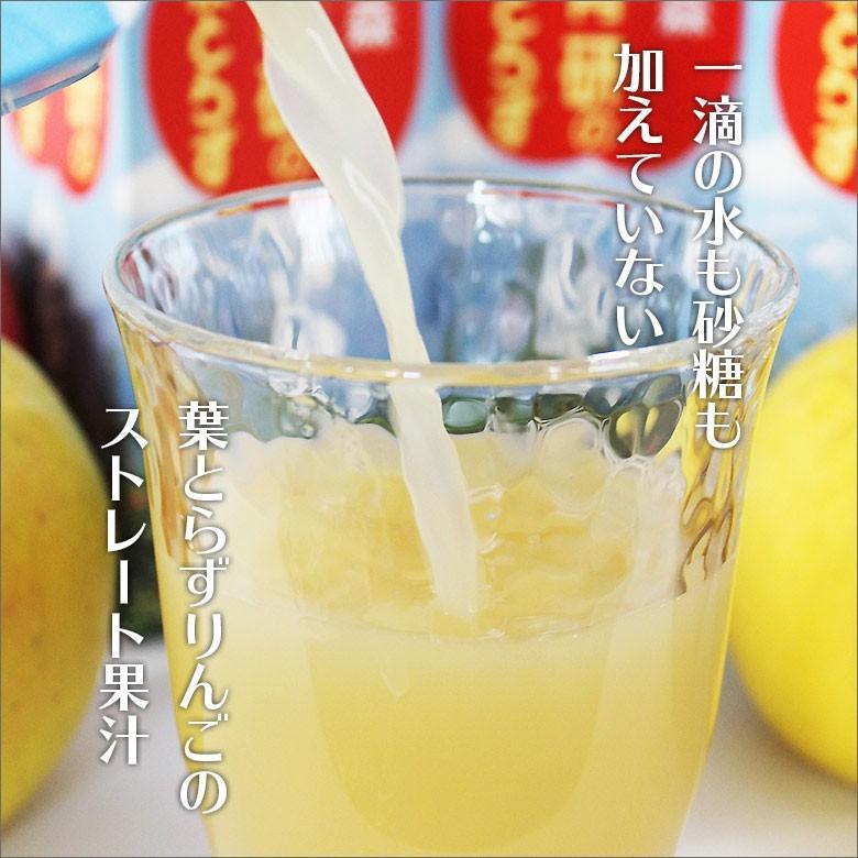 ジュース 葉とらずりんごジュース 青森県産 青研 1000g×6本入り あすつく tamenobu-store 03