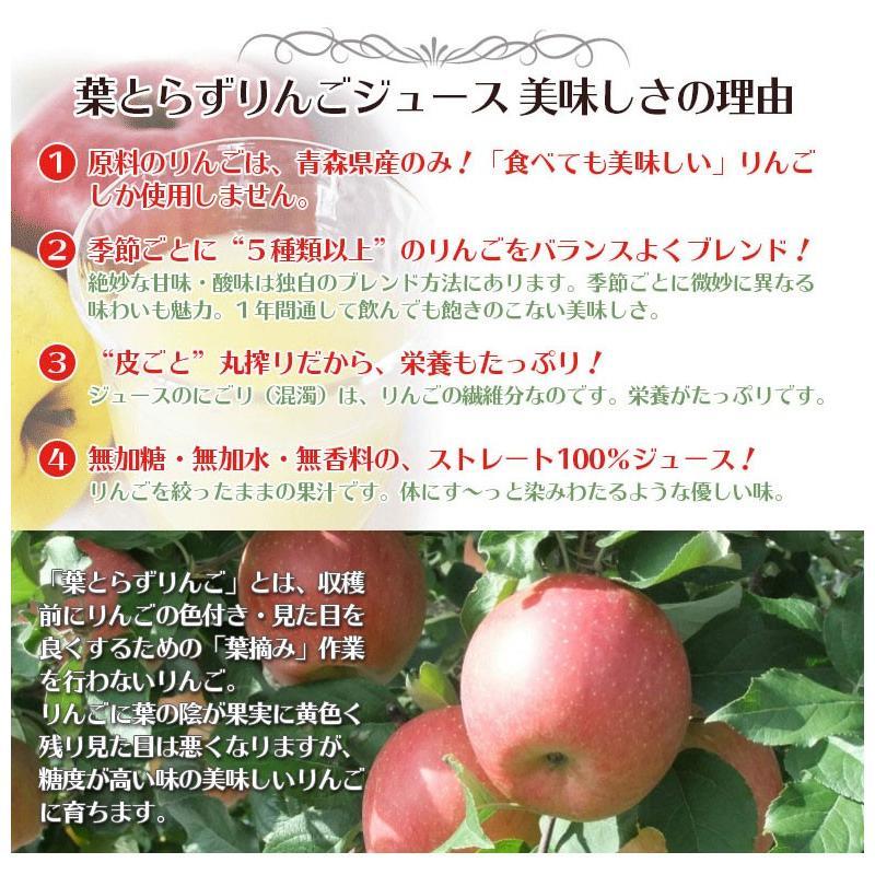 ジュース 葉とらずりんごジュース 青森県産 青研 1000g×6本入り あすつく tamenobu-store 06