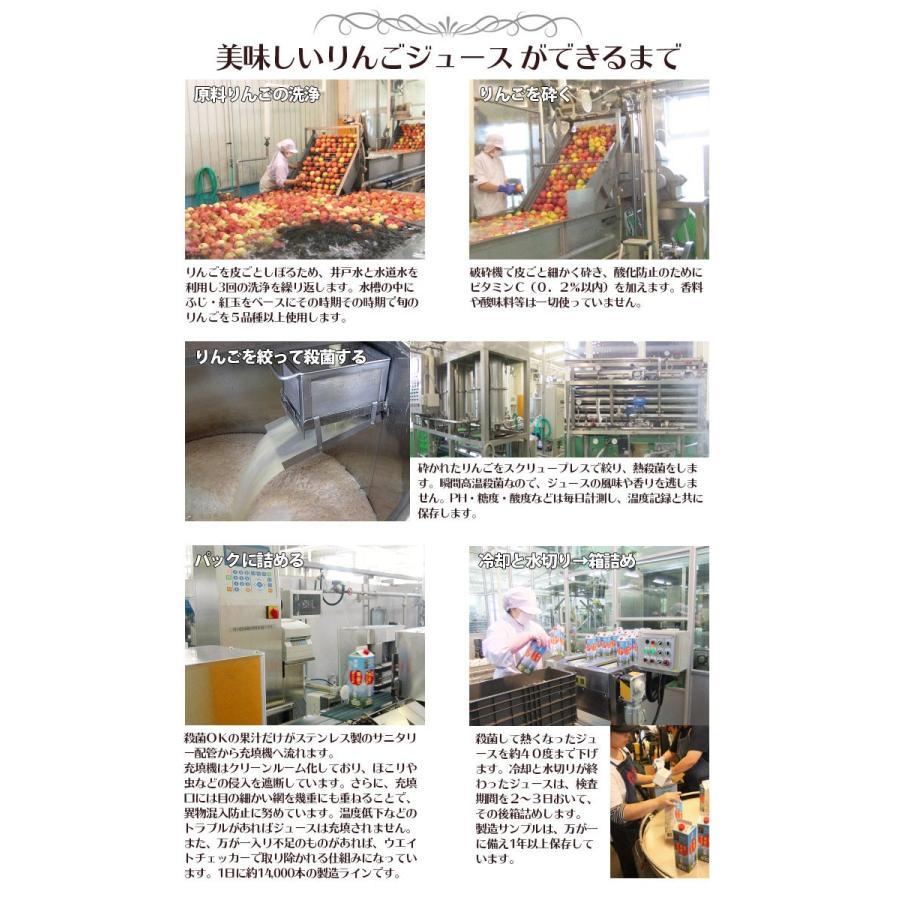 ジュース 葉とらずりんごジュース 青森県産 青研 1000g×6本入り あすつく tamenobu-store 07