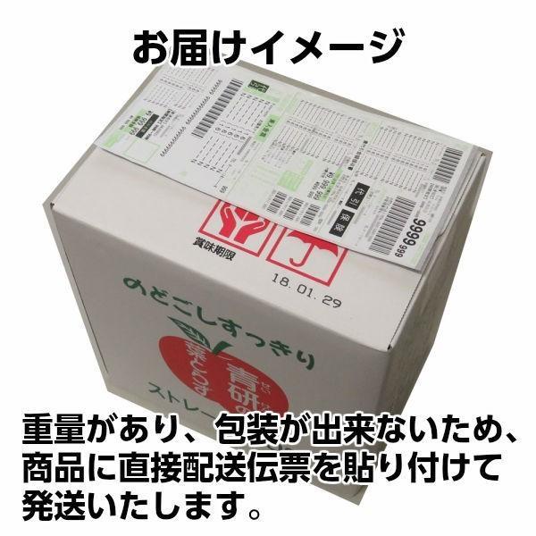ジュース 葉とらずりんごジュース 青森県産 青研 1000g×6本入り あすつく tamenobu-store 09
