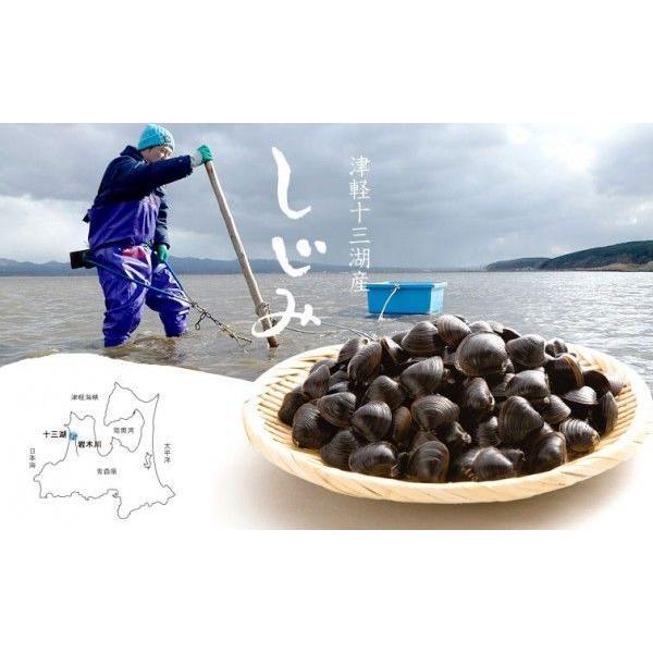 しじみ 十三湖 青森県産 大粒 冷凍 しじみ貝 1kg木箱入り tamenobu-store 05