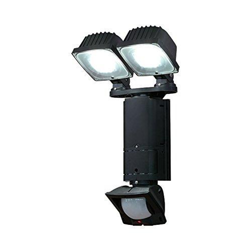 DXアンテナ デルカテック センサーライト 2灯型 白色LED(高出力) 人体を検知して点灯するLEDライト DSLD200A2