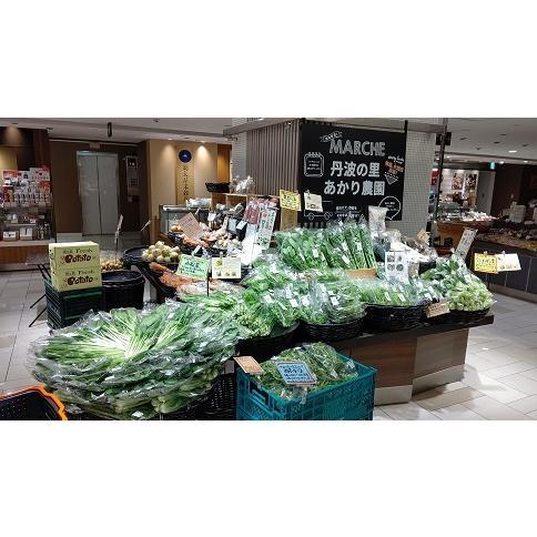 農薬不使用野菜セット 丹波篠山の野菜 火曜日発送 発送曜日変更になりました|tanba-akari-farm|05