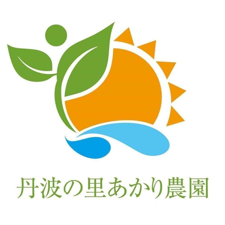 農薬不使用野菜セット 丹波篠山の野菜 火曜日発送 発送曜日変更になりました|tanba-akari-farm|06