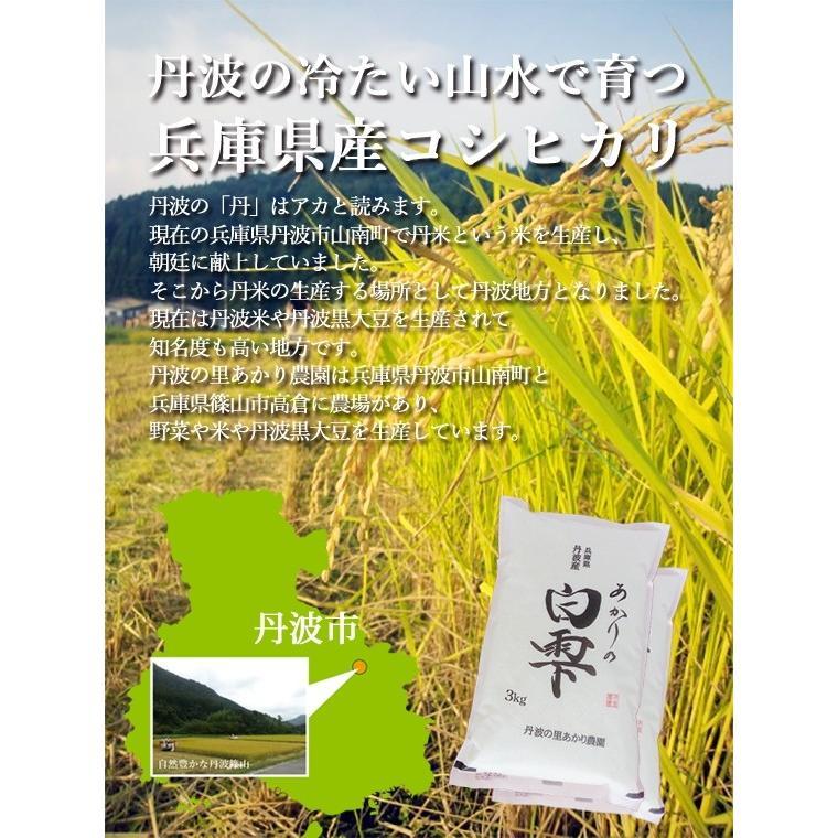 新米 丹波産コシヒカリ 除草剤、農薬、化学肥料一切不使用 あかりの白雫 1.5kg×2袋 精米※未選別|tanba-akari-farm|03