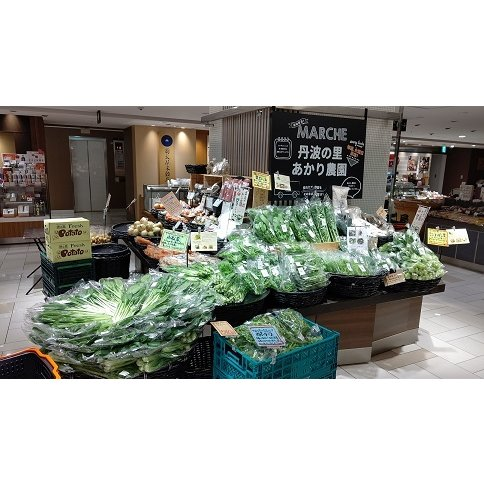 送料込 新鮮野菜セット 数量限定 丹波篠山野菜 火曜日ごとの発送です。発送日変更しました tanba-akari-farm 02