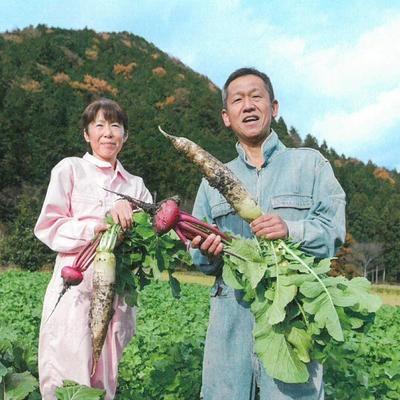 ドライバジル  丹波産自然栽培バジル100%使用。西日本 野菜 tanba-shinotaro 03