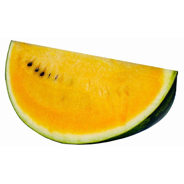 たね ナント種苗 超特価 スイカ 小袋 サマーオレンジグランド 世界の人気ブランド 種子