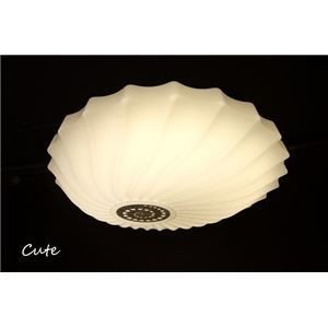 ds-1677283 シーリングライト(照明器具) LEDタイプ/4000ルーメン 自然光色 〔リビング照明/ダイニング照明〕【電球付き】 (ds1677283)