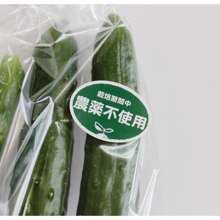 *公式販売*農薬不使用シール 1000枚(k-n02)1シート10枚×100シート入り(サイズ3.7×2.7cm)|tantanjp|02
