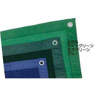 【未使用品】 ds-2199831 防風ネット 遮光ネット 2.0×10m モスグリーン 日本製【】 (ds2199831), 新品同様 fbaf9244