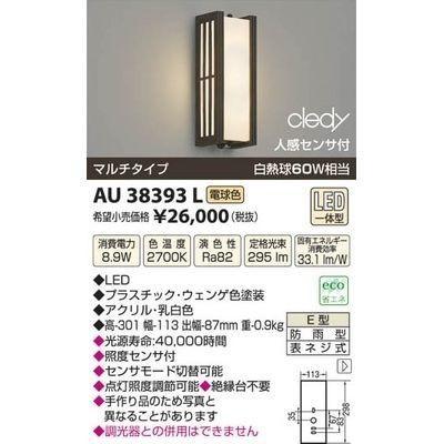 コイズミ コイズミ AU38393L LED防雨型ブラケット