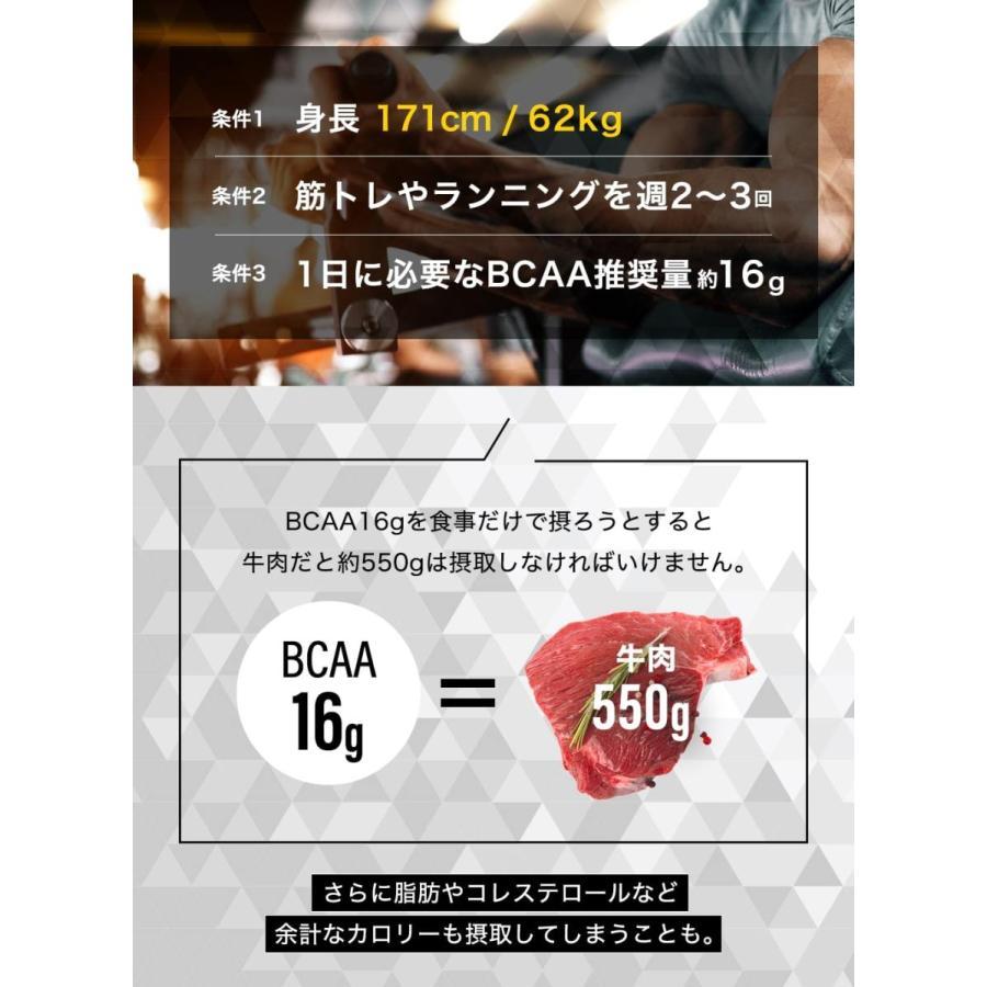TARZA(ターザ) BCAA カプセル 158400mg 480粒入 約120回分  国産 アミノ酸 サプリメント タブレット 無香 tarza 13