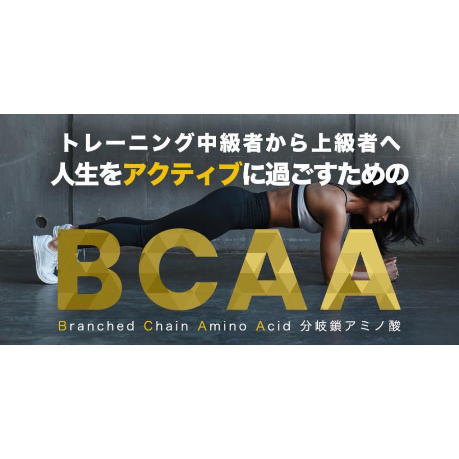 TARZA(ターザ) BCAA カプセル 158400mg 480粒入 約120回分  国産 アミノ酸 サプリメント タブレット 無香 tarza 06