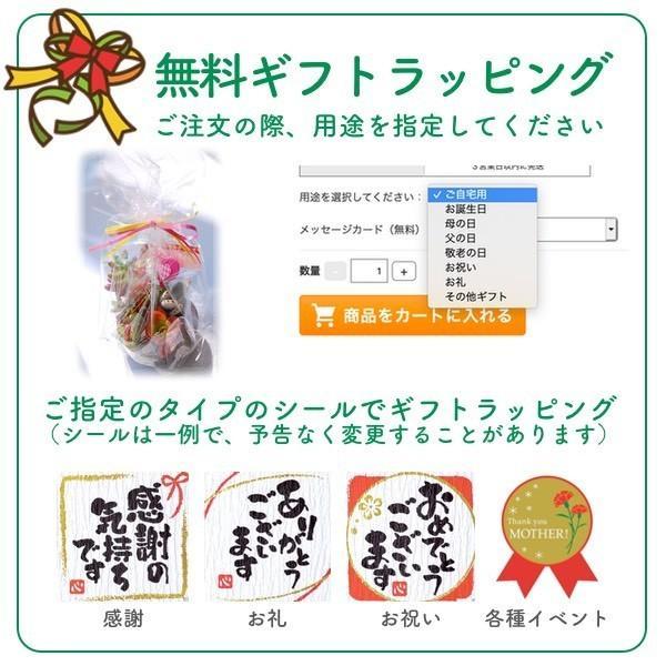 多肉植物苔玉「かっぱんだ☆モスリン」セット/無料ギフトラッピングOK|tawawa|04