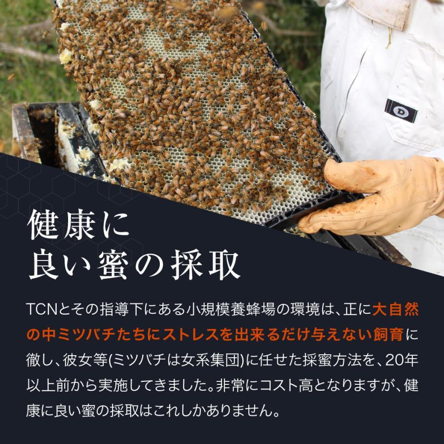 マヌカハニー MGO550+ インカナム マヌカハニー モンドセレクション金賞受賞 はちみつ 500g AMN22-500|tcn3|15