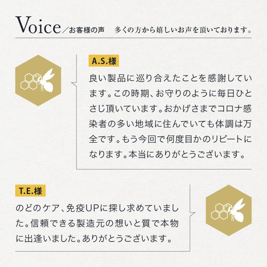 マヌカハニー MGO550+ インカナム マヌカハニー モンドセレクション金賞受賞 はちみつ 500g AMN22-500|tcn3|17