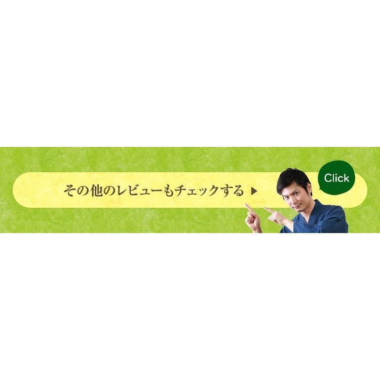 べにふうき茶 緑茶 機能性表示食品 鹿児島産 茶葉 100g 粉末50g お茶 tea-sanrokuen 12