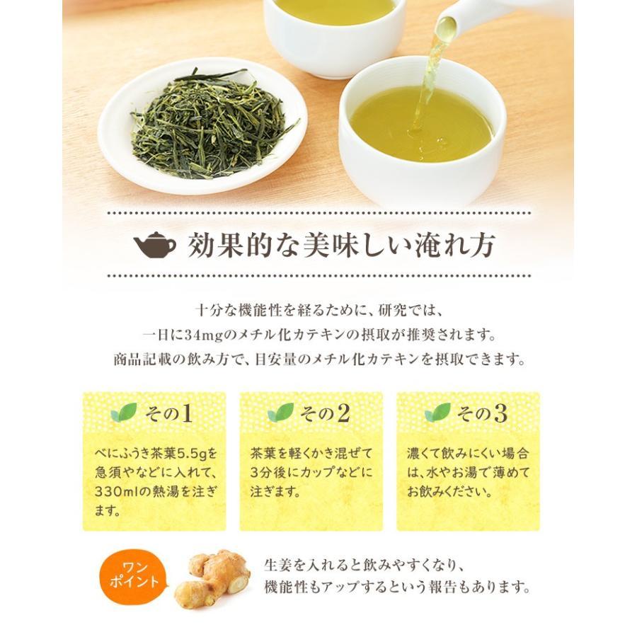 べにふうき茶 緑茶 機能性表示食品 鹿児島産 茶葉 100g 粉末50g お茶 tea-sanrokuen 15