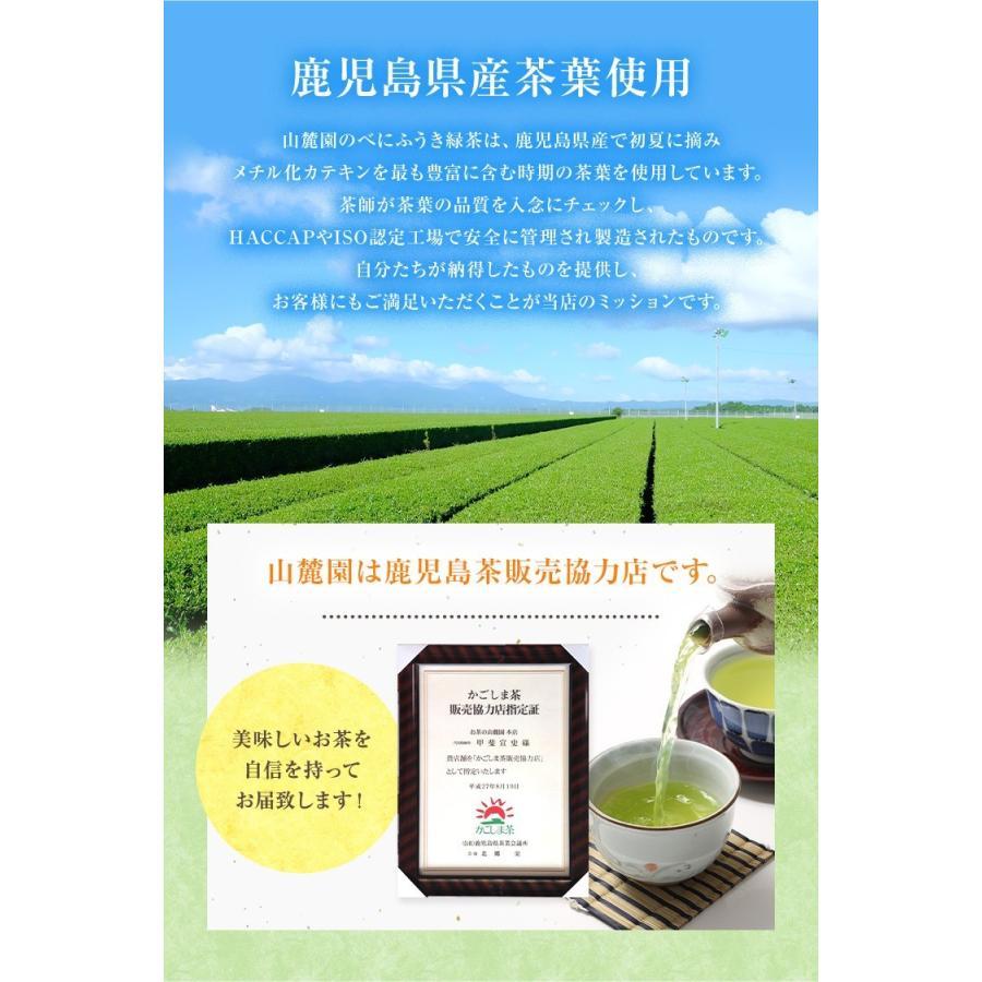 べにふうき茶 緑茶 機能性表示食品 鹿児島産 茶葉 100g 粉末50g お茶 tea-sanrokuen 16