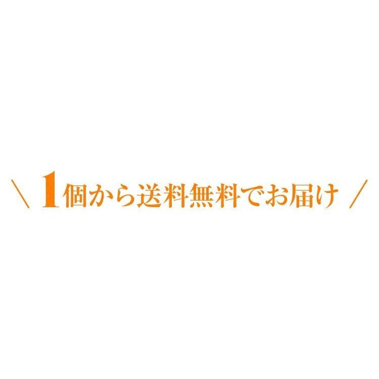 べにふうき茶 緑茶 機能性表示食品 鹿児島産 茶葉 100g 粉末50g お茶 tea-sanrokuen 03