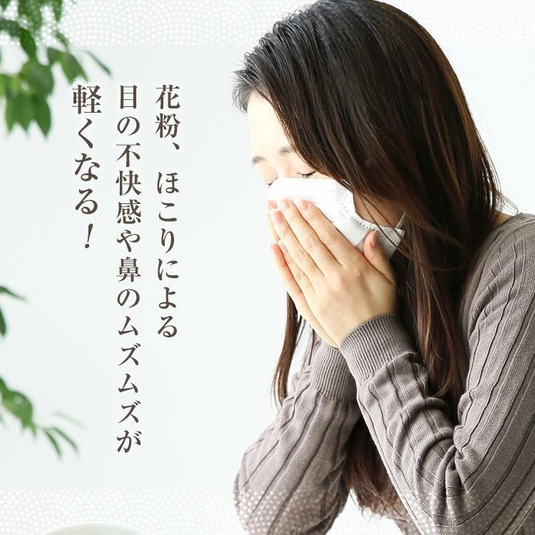べにふうき茶 緑茶 機能性表示食品 鹿児島産 茶葉 100g 粉末50g お茶 tea-sanrokuen 04