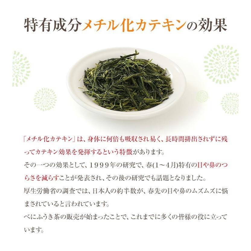べにふうき茶 緑茶 機能性表示食品 鹿児島産 茶葉 100g 粉末50g お茶 tea-sanrokuen 07