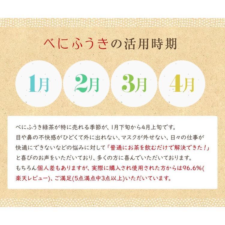 べにふうき茶 緑茶 機能性表示食品 鹿児島産 茶葉 100g 粉末50g お茶 tea-sanrokuen 09