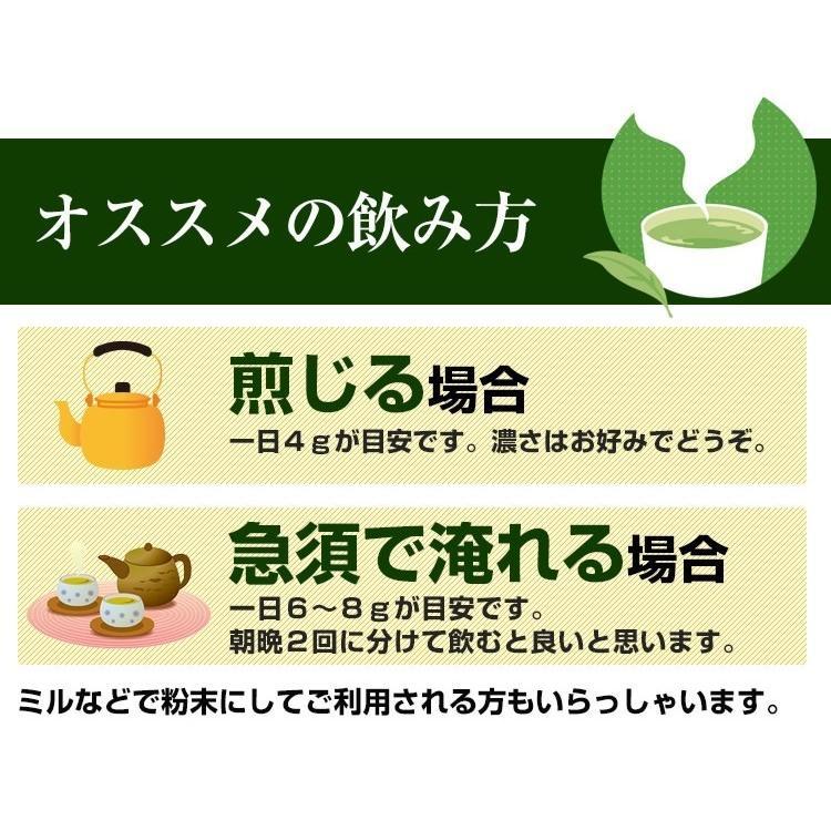 べにふうき茶 緑茶 鹿児島産 茶葉 100g  粉末 50g(増量中) 3個以上 送料無料 お茶|tea-sanrokuen|09