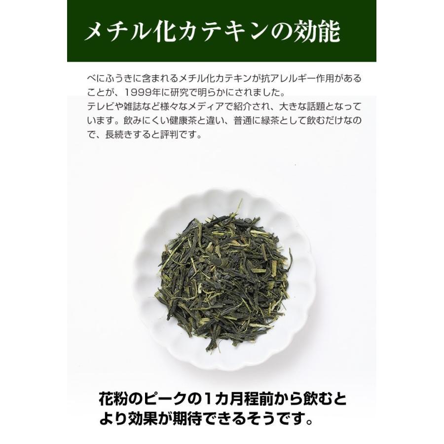 べにふうき茶 緑茶 鹿児島産 茶葉 100g  粉末 50g(増量中) 3個以上 送料無料 お茶|tea-sanrokuen|10