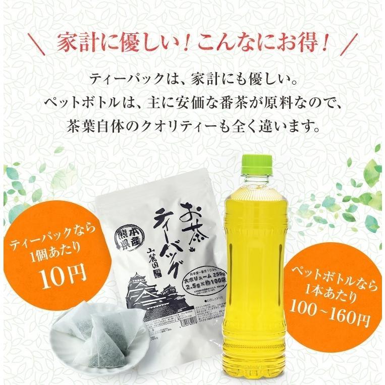 ティーパック お茶 ティーバッグ 緑茶 2.5g×100個 熊本産一番茶100% 水出し お湯だしOK|tea-sanrokuen|04