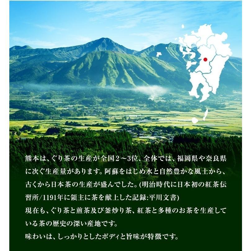 ティーパック お茶 ティーバッグ 緑茶 2.5g×100個 熊本産一番茶100% 水出し お湯だしOK|tea-sanrokuen|08