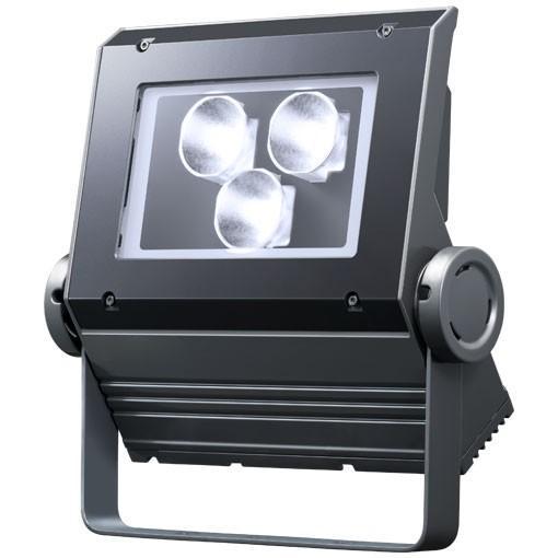 (送料無料) 岩崎電気 ECF0698D/SAN8/DG (ECF0698DSAN8DG) LED投光器 レディオックフラッドネオ 60クラス(旧80W) 狭角 昼光色 ダークグレイ