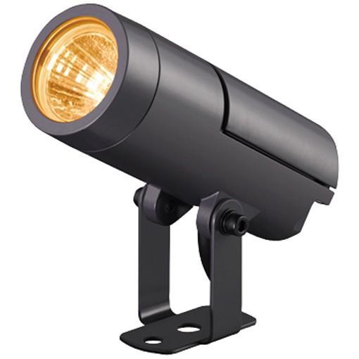 (送料無料) 岩崎電気 ECF30011N/LW/SAN1/DG (ECF30011NLWSAN1DG) LED投光器 レディオックフラッドニノ 狭角 電球色 ダークグレイ
