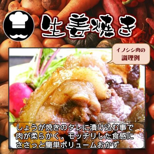 【焼肉用】天然ジビエ イノシシ肉 猪肉 国産 島根 500g(250×2パック) 厚切りスライス 焼肉用|tekeda|07