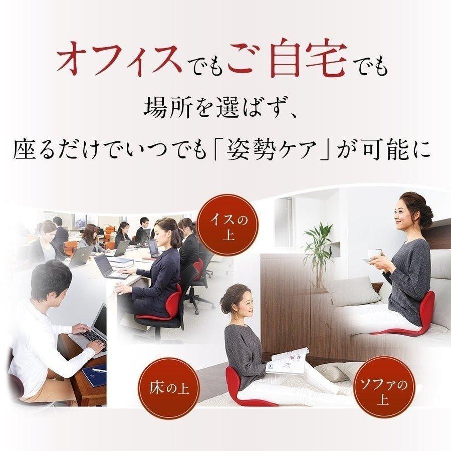 座椅子 椅子 ボディメイクシート スタイル Body Make Seat Style クッション 腰 お尻 姿勢 座布団 MTG 猫背 デスクワーク telemarche28 05