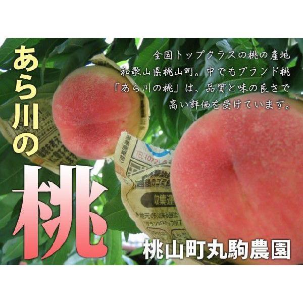 【送料無料】和歌山 あら川の桃 予約受付中!!
